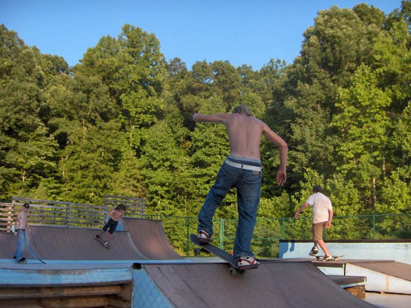 Photo Credit  Brailleskateboarding com  Skateboarding